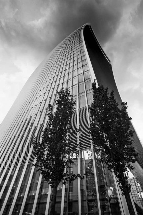 Sky Garden Building London Litescape media black and white photo