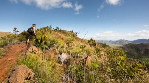 Hiking in the South of the Main Island of New Caledonia