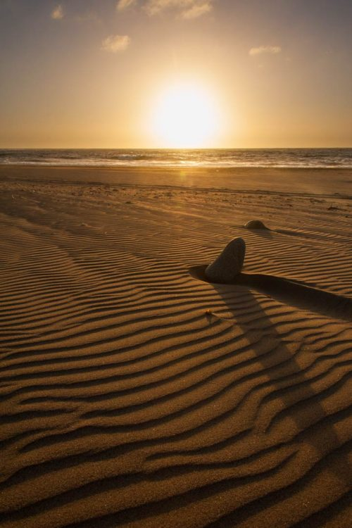Natural lines on a sandy beach at sunset